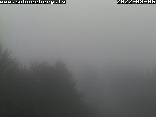 Webcam Baumgartner Bergblick